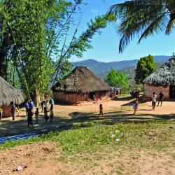 TL 8 - village