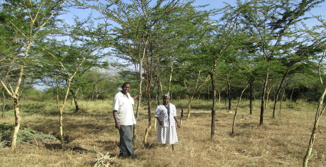 Jonathan_FMNR_Land_Kenya