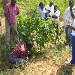 Rwanda project update
